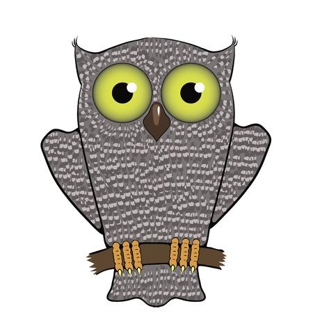 predator: Cartoon Owl  Isolated on White Background. Predator Bird. Illustration