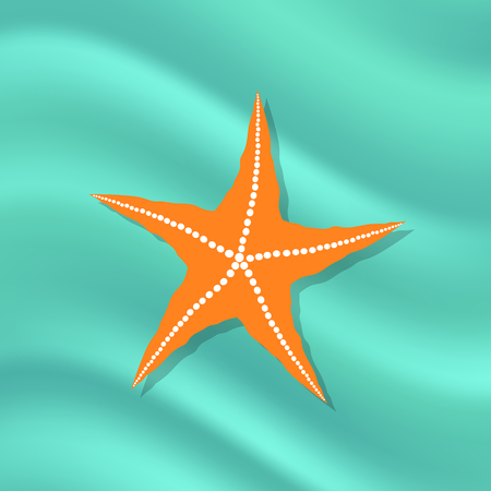 Plenty of Cushion Starfish on a  Ocean Floor. Caribbean Starfish on Azure  Background
