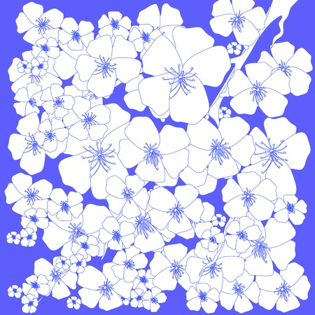 Spring White Flowers Isolated on Blue Background