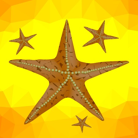 ocean floor: Plenty of Cushion Starfish on a Sandy Ocean Floor. Caribbean Starfish on a Yellow Polygonal Background