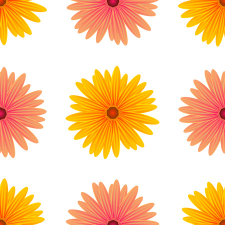 flower thorns: Spring Pink Yellow Flowers Isolated on White Background. Seamless Flower Pattern