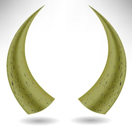 raging bull: Animal Horns Isolated on White Background. Bull Horns Stock Photo