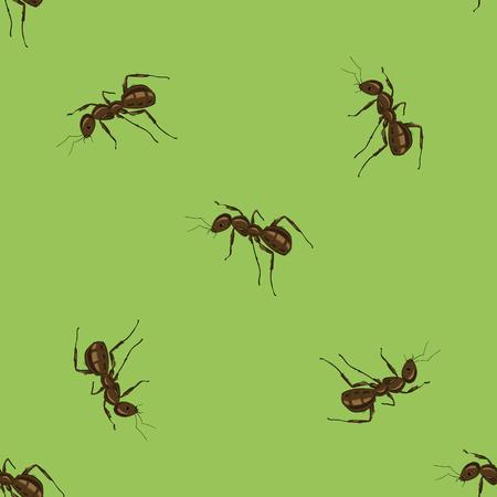 terminator: Seamless Animal Pattern. Ant Isolated on Green Background. Illustration