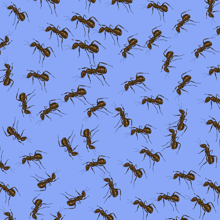 terminator: Animal Pattern. Ant Isolated on Blue Background. Illustration
