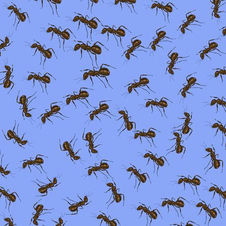 terminator: Animal Pattern. Ant Isolated on Blue Background. Stock Photo