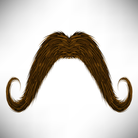 burly: Brown Hairy Mustache Isolated on Grey Background