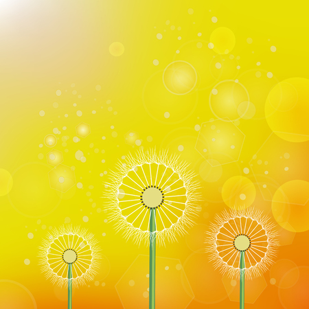 흐리게 노란 오렌지 태양 배경에 봄 민들레 일러스트