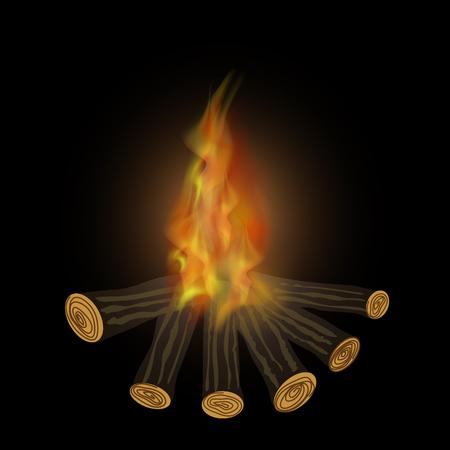 Burning Bonfire and Flames Isolated on Black Background