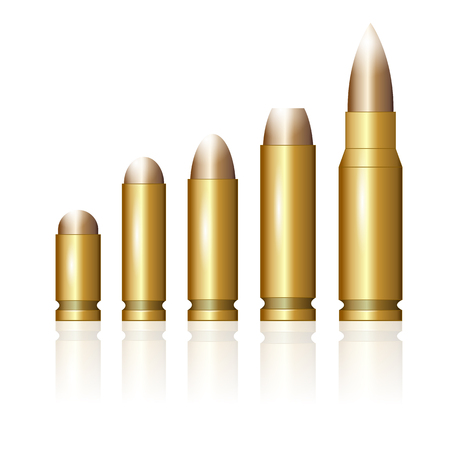Set of Different Bullets Isolated on White Background