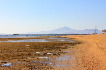 Low tide on the beach. Sanny shote and blue mountains