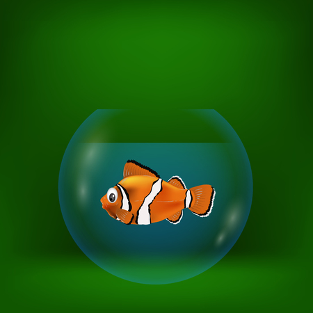 swimming glasses: colorful illustration with sea clown fish on a green background