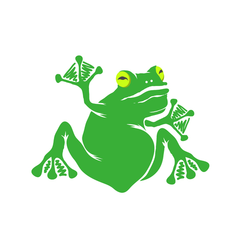 Green Cartoon Frog Isolated on White Background