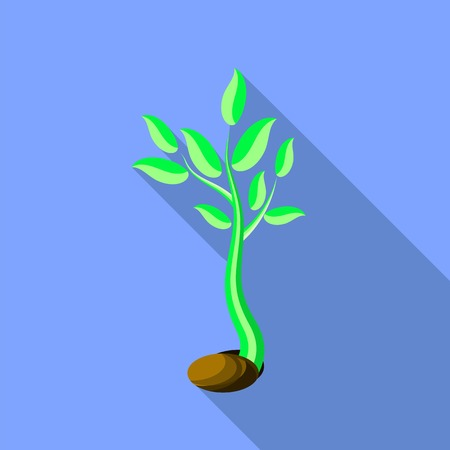 Plant growth. Little green sprout seedling germinating from seed. Tree shoot in soil. Illustration