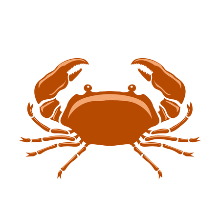Boiled Sea Red Crab with Giant Claws Isolated on White Background. Fresh Seafood Icon. Delicous Appetizer.