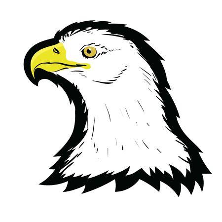 Stylized White American North Bald Eagle Head Tattoo Design.   Prey Bird Isolated on White Background. Predator Hawk Mascot. Symbol of Freedom. Illustration