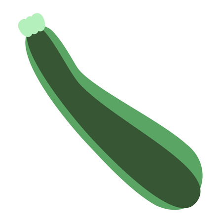 zucchini flat illustration. Food and drink, kitchen and cooking, fruit and vegetables series.