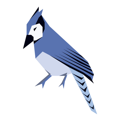 blue jay flat illustration isolated on white. Forest animals series Illustration