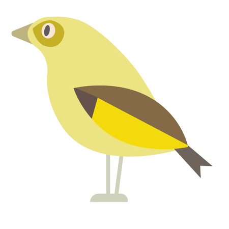 yellow bird flat illustration isolated on white. Forest animals series Çizim