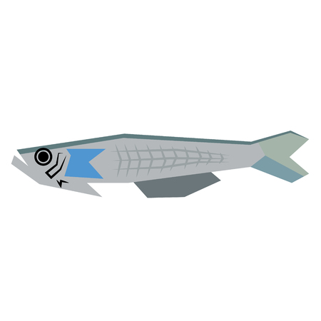 sea fish flat illustration isolated on white. Marine and underwater life series