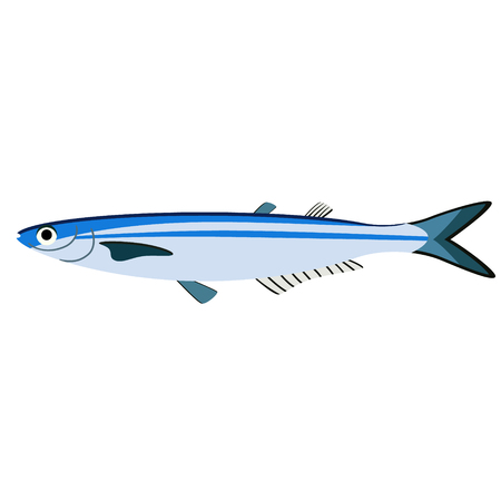 blue fish flat illustration isolated on white. Marine and underwater life series