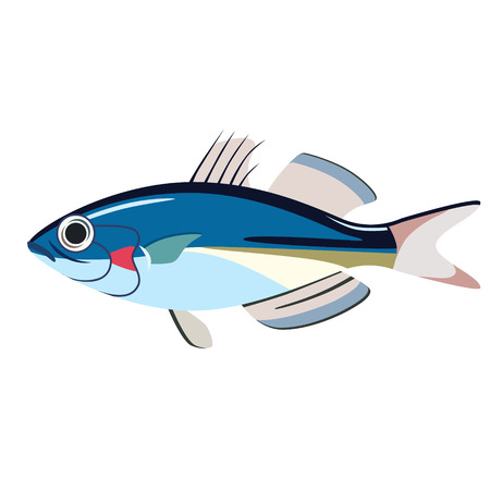 illustration plat de poisson bleu isolé sur blanc. Série vie marine et sous-marine