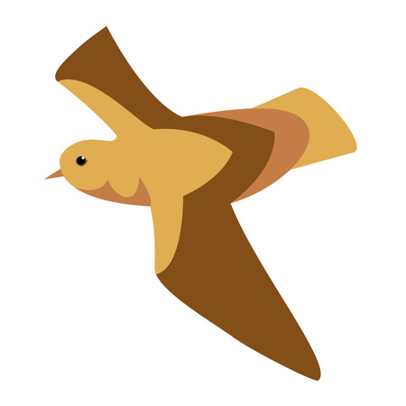 brown bird flat illustration isolated on white. Marine and underwater life series