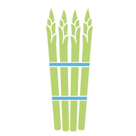 asparagus flat simple illustration