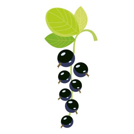 schwarze Johannisbeere flach einfache Illustration. Küche kochen - Gemüse- und Obstserie.