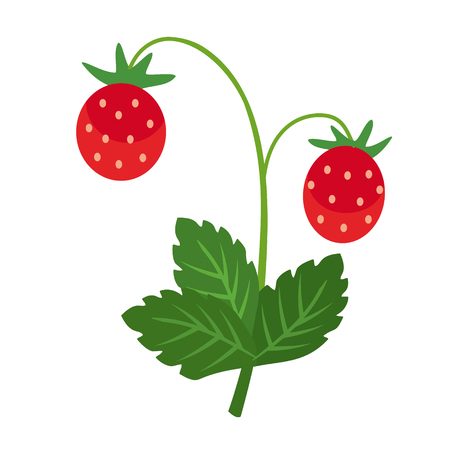 wild strawberry flat simple illustration. Kitchen cooking - vegetables and fruits series. Vettoriali
