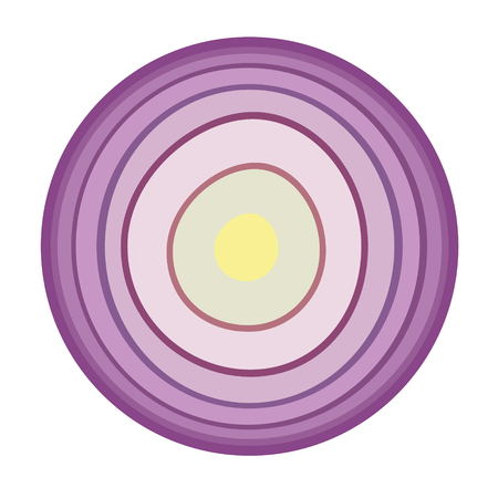 onion flat simple illustration