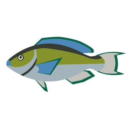 fish flat style illustration. Marine and sea underwater fish series Illustration