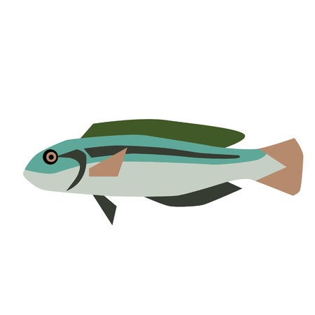 fish flat style illustration. Marine and sea underwater fish series Ilustração