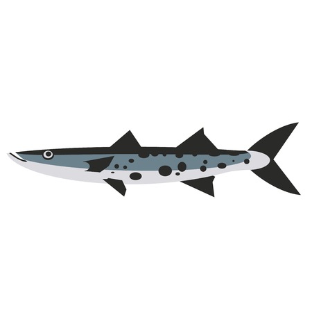 long fish with spots flat style illustration. Marine and sea underwater fish series