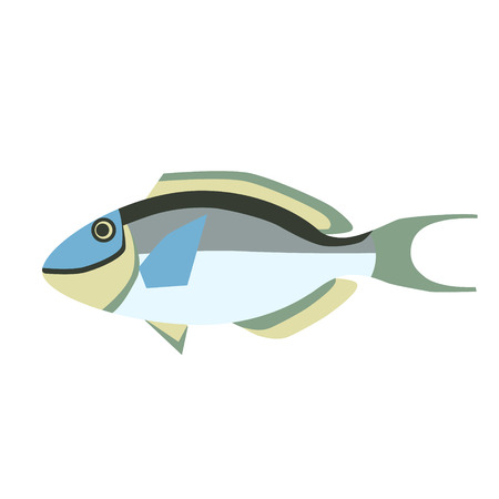 tropical fish flat style illustration. Marine and sea underwater fish series Illustration