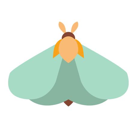 moth flat illustration