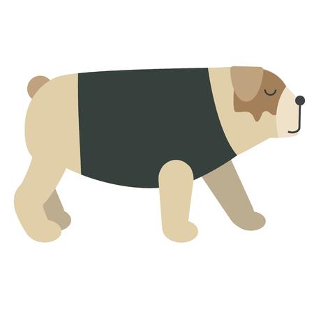 Dressed dog flat illustration. Home dog and cat lifestyle series.