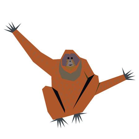 orangutan flat illustration Wild life plants and animals series