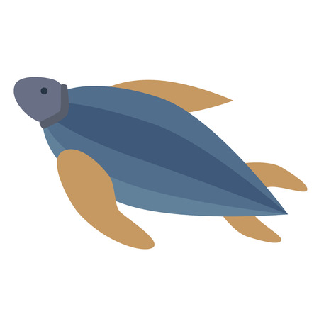 sea turtle flat illustration