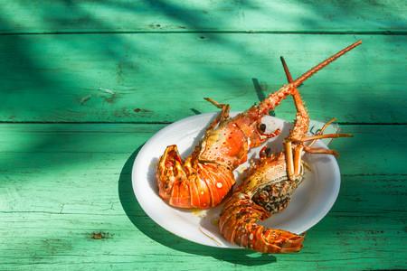 molluscs: lobsters, seafood, exotic, food, sea,