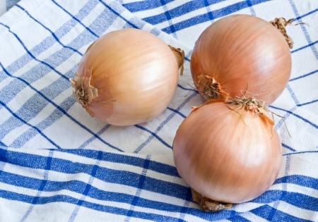 dishtowel: Three ripe onions on dishtowel Stock Photo