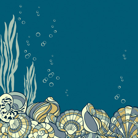 bubbles card: Hand drawn seashells, seaweed and bubbles card. Element for design with place for text Illustration