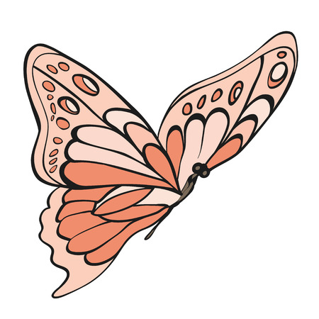 entomological: Pink butterfly on white background. Hand-drawn contour lines.