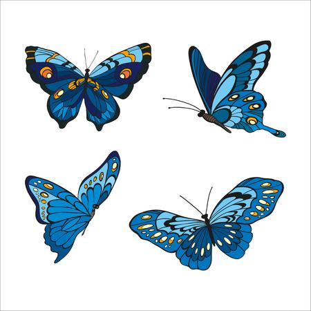 entomological: blue butterfles on white background. illustration