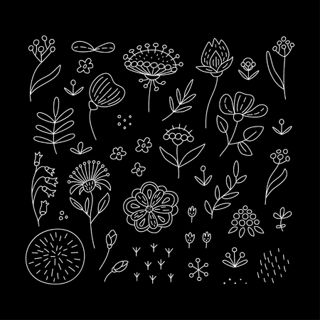 Hand drawn floral elements set. Perfect vector design elements for decorations, floral pattern, wrapping paper, greeting card