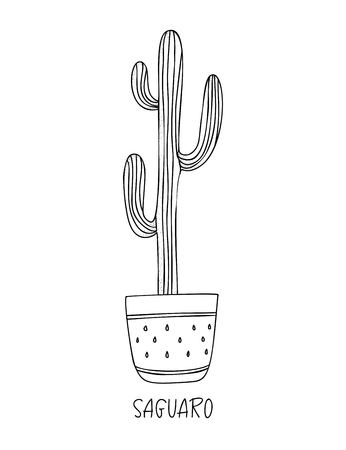 Saguaro cactus in decorative pot in doodle style with a handwritten title. Vector illustration. Design elements for stamp, poster, stickers Ilustração