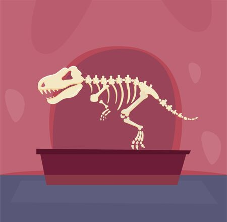 The skeleton of a dinosaur stands in a museum