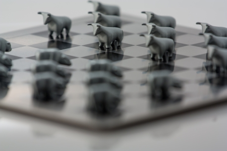 The photo shows the metal figures of the bull and checkerboard