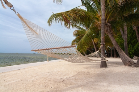 The photo shows a hammock on the beach. photo