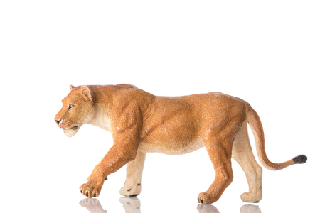 Photo shows the toy lioness on white. Stock Photo