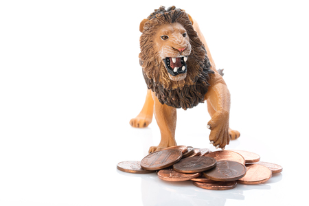 Photo shows concept: the toy lion protection money.